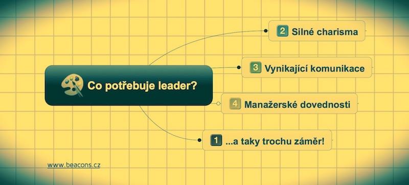 Co potřebuje leader?